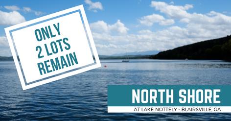 North Shore ata Lake Nottely