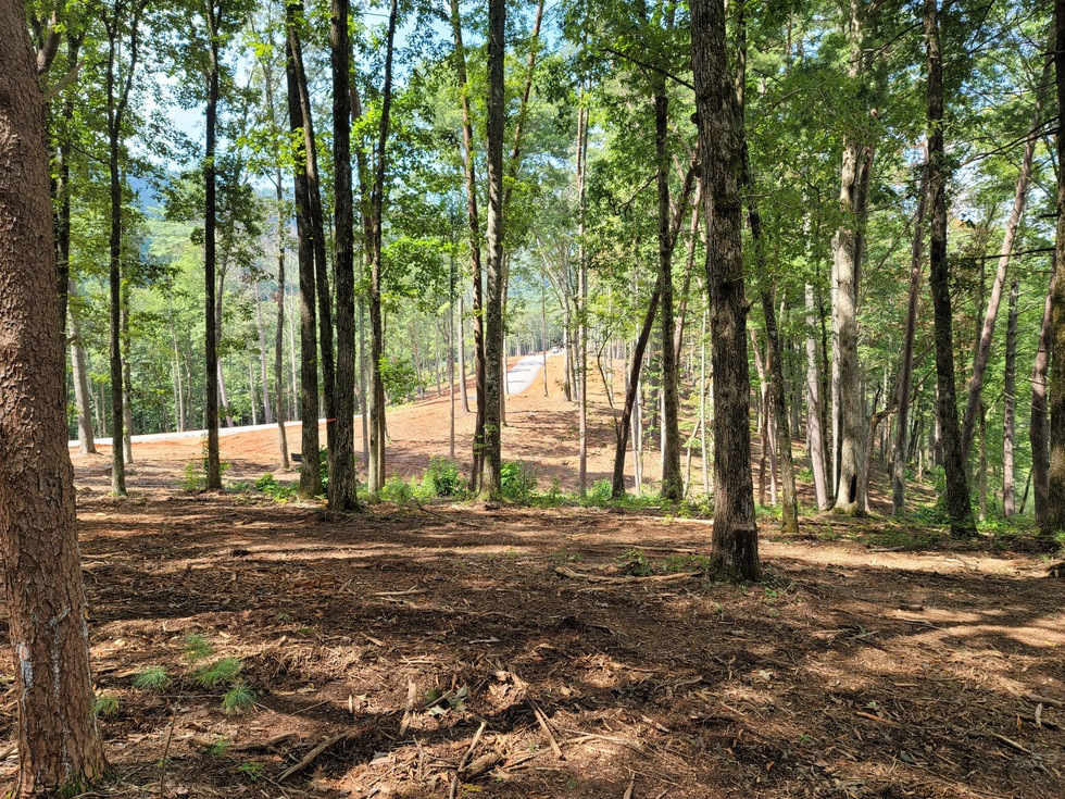 Wooded home site