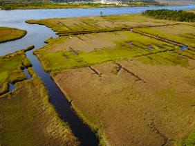 Marsh,Creeks and the Cape Fear River