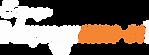 Logo Desprograme-se - BRANCO e LARANJA.p