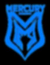 MeS Logo_blau.png