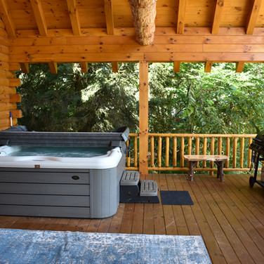 Hot tub, propane/charcoal grill. Click twice for