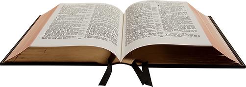 biblia gigante.tif