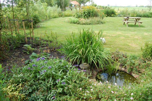 Tuin, gezien vanaf het terras