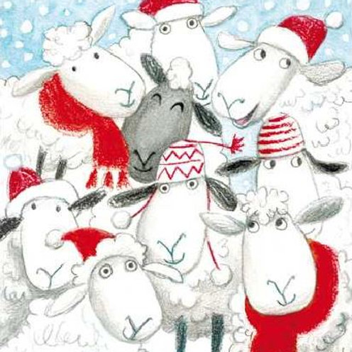 Wooly Sheep Christmas Card Pack of 5