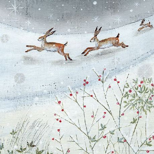 Hares in the Snow Christmas Card Pack of 6