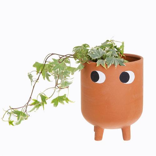 Leggy Terracotta Plant Pot