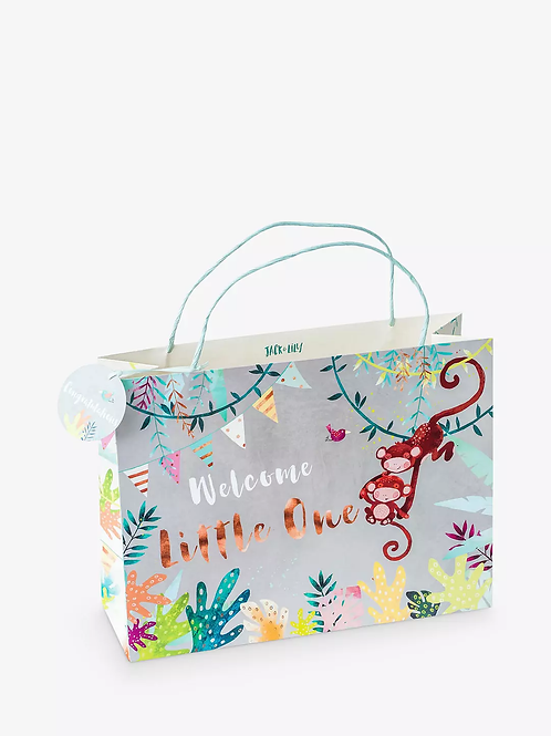 Welcome Little One Shopper Gift Bag