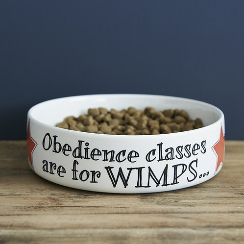 Obedience Classes Pet Bowl Large