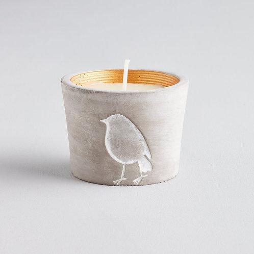 St Eval Inspiritus Robin Candle