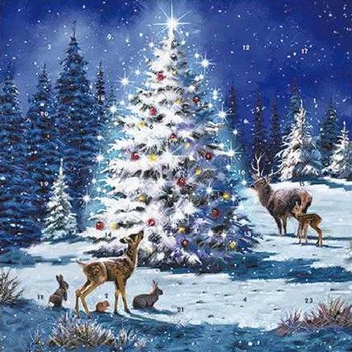 Snowy Christmas Tree Advent Calendar Card