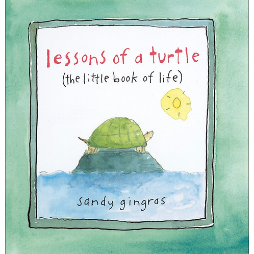 Lessons of a Turtle Book