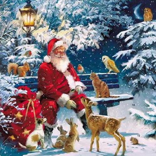 Santa On Bench Small Advent Calendar