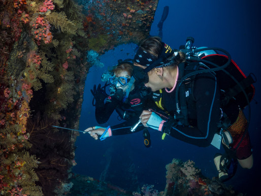The Guide to Help you Decide if you should Become a Divemaster or Not - Is it for you?