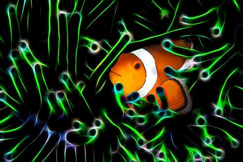 Neon Matrix Clownfish.jpg