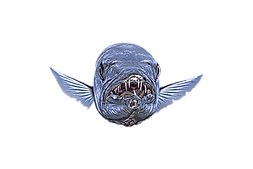 BARACUDA%20PNG_edited.png