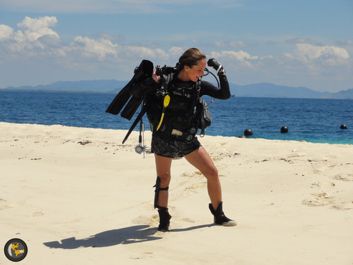 The full Guide for Choosing the Best Place to Enroll for Your  Divemaster Course
