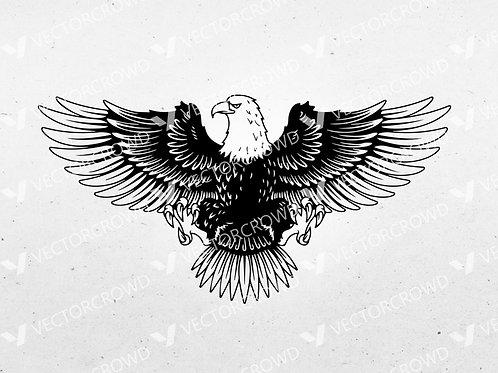 Eagle Spread Wings Graphic | SVG Cut File