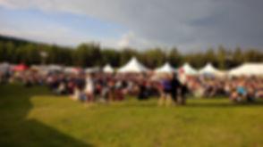 festival 2.jpeg