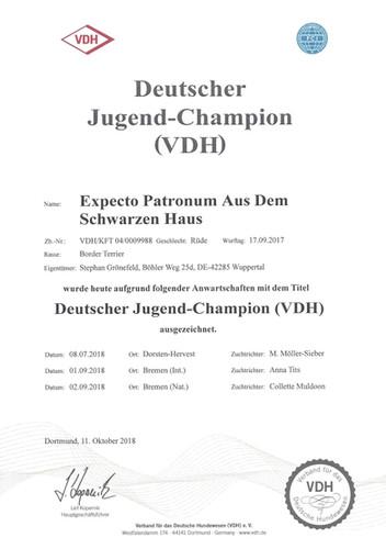 Dt-JgdCh.jpg