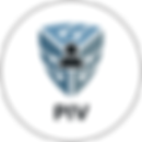 flex_app_piv.png