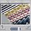 Thumbnail: Papel Digital - Marinheiro