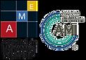 logo-AMI.png