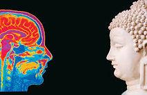 Budismo y neurociencias.jpg