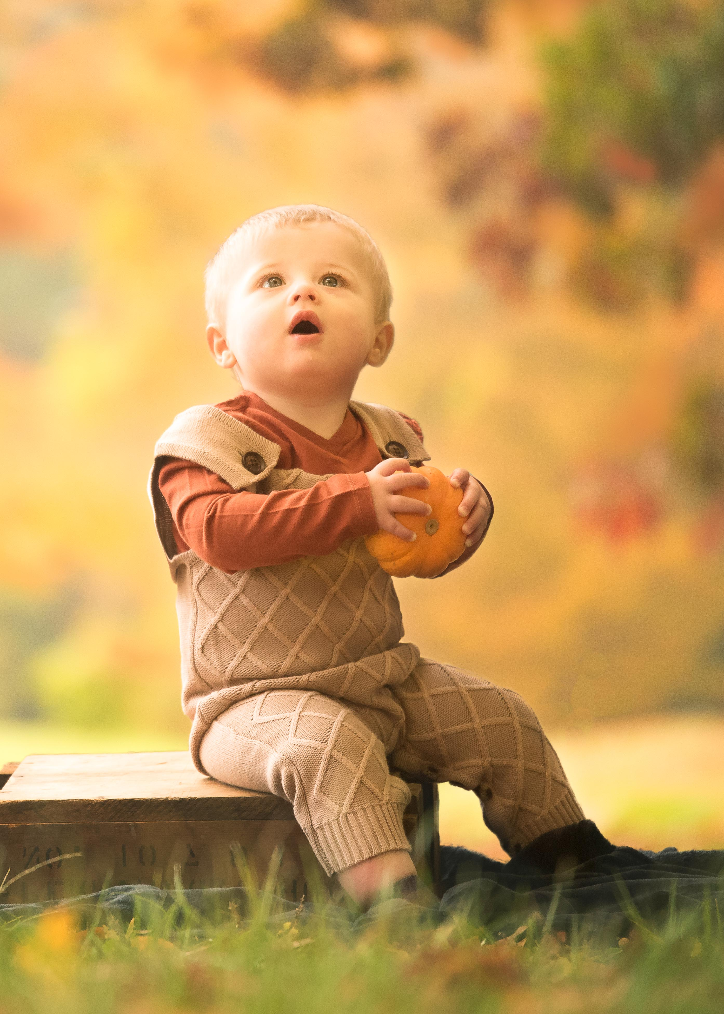 little pumpkin child photography