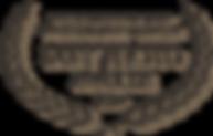 logo-STEIN.png