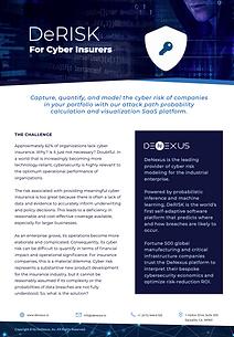 DENEXUS Brochure 5.4 -Cyber Insurers.png