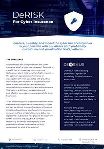DENEXUS Brochure 5.3 -Cyber Insurance.pn