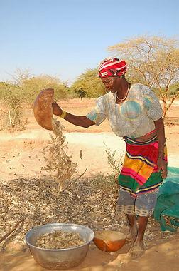 BF-VTE Seguenega-Koukbanko-Bintou Ouedra