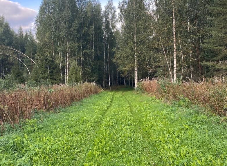"""Участник №4 СНТ """"Елизаровское"""""""