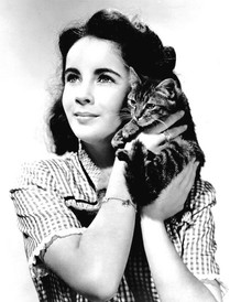 20 Lovely Vintage Photos of a Young Elizabeth Taylor Posing With Her Beloved Cats