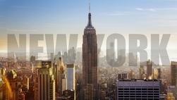 Mikeshake New York Metropolis