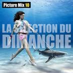 Mikeshake-La-Selection-du-Dimanche.png