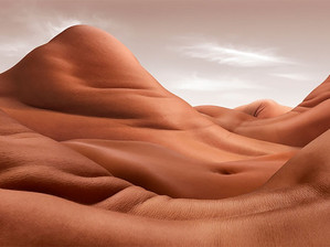 CARL WARNER: BODYSCAPES, MAJESTUEUX CORPS HUMAINS