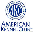 AKC registered beaucerons