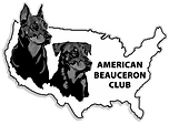 Member of the American Beauceron Club
