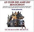 Member of the Club des Amis du Beauceron
