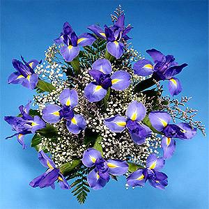Iris Flowers Bouquet for Birthday