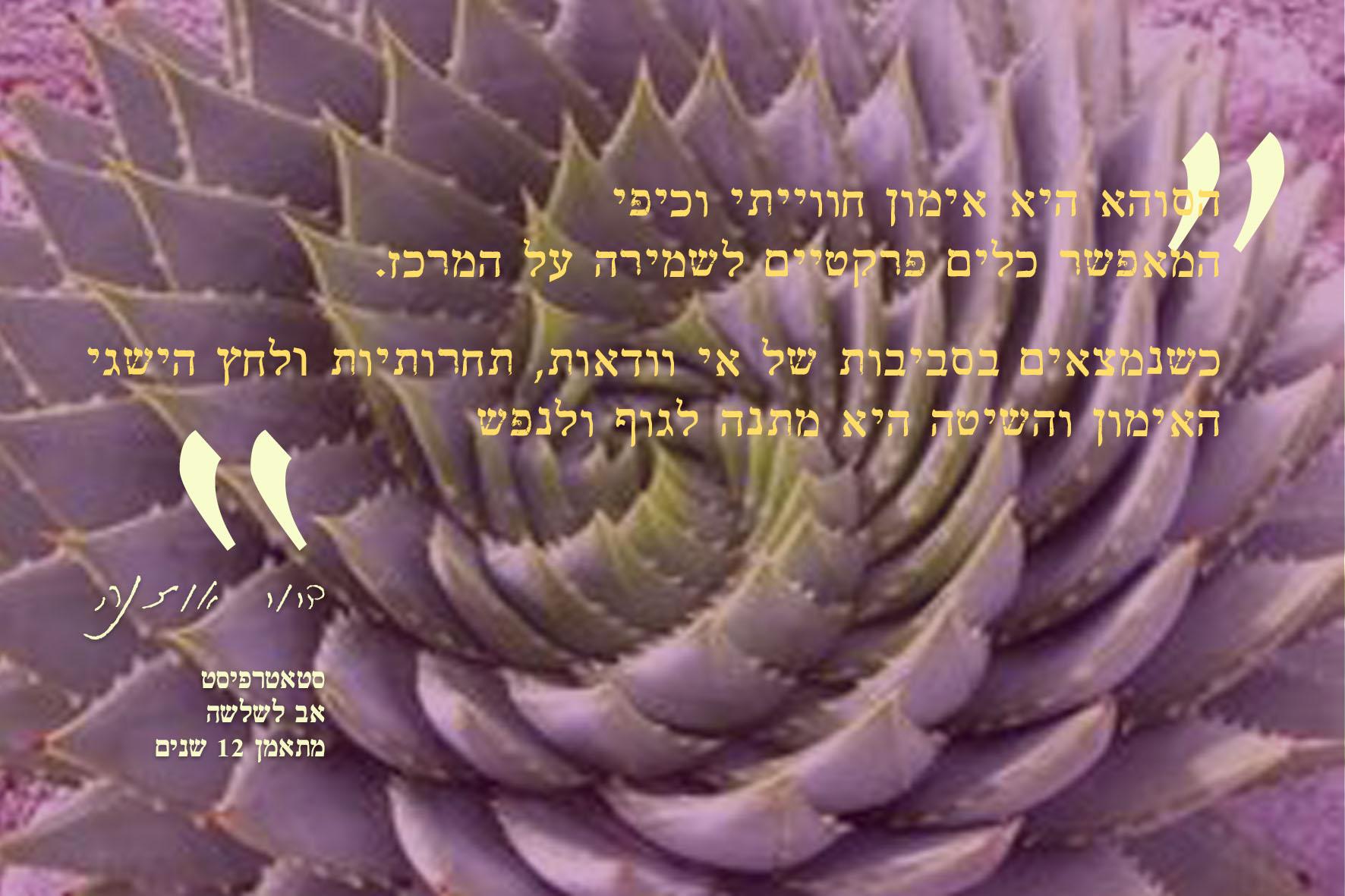Ouzana Soha Testimony Designed