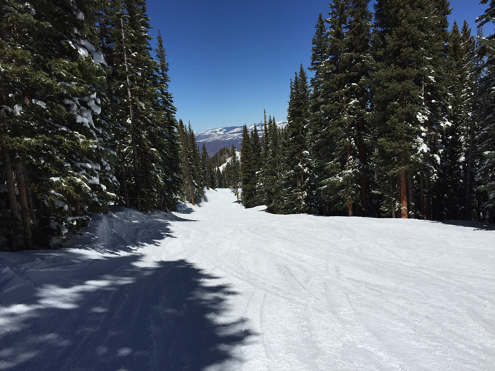 Aspen's Ajax Mounatin offers fun ski trials through the trees.