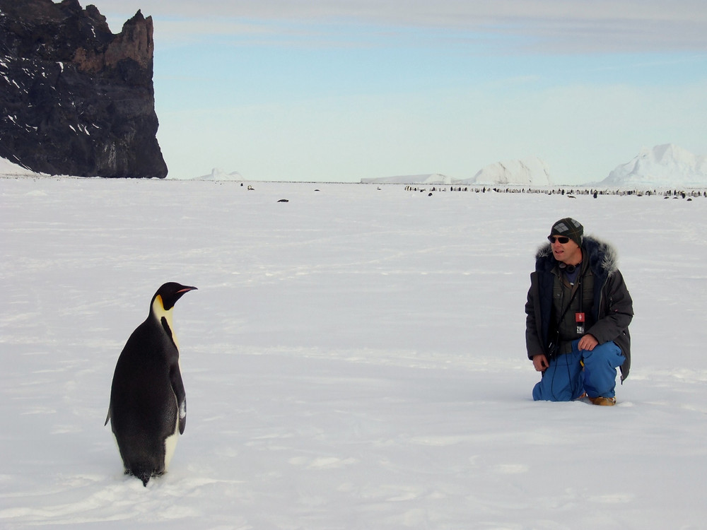 Steve Wilde gets up close to an Emperor Penguin at cape Washington, Antarctica.