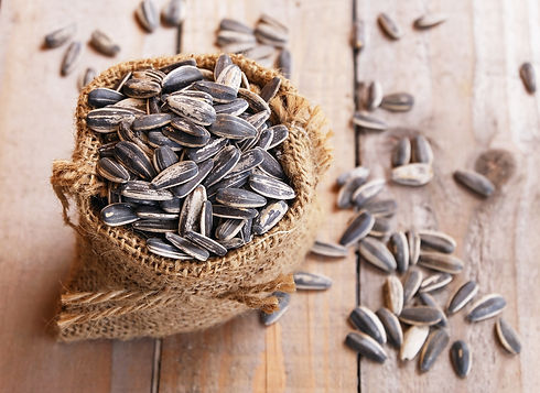 pile of sunflower seeds in the small sa
