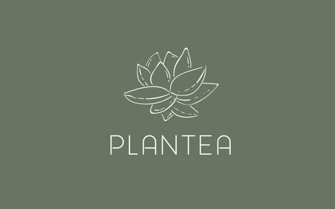 Proyecto-plantea-shop-web_01.jpg