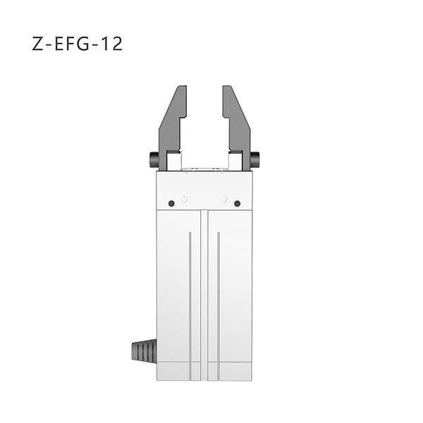 Z-EFG-12.png