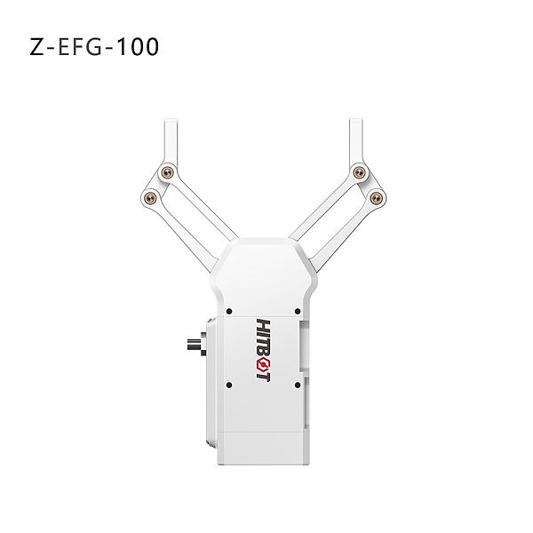Z-EFG-100.png
