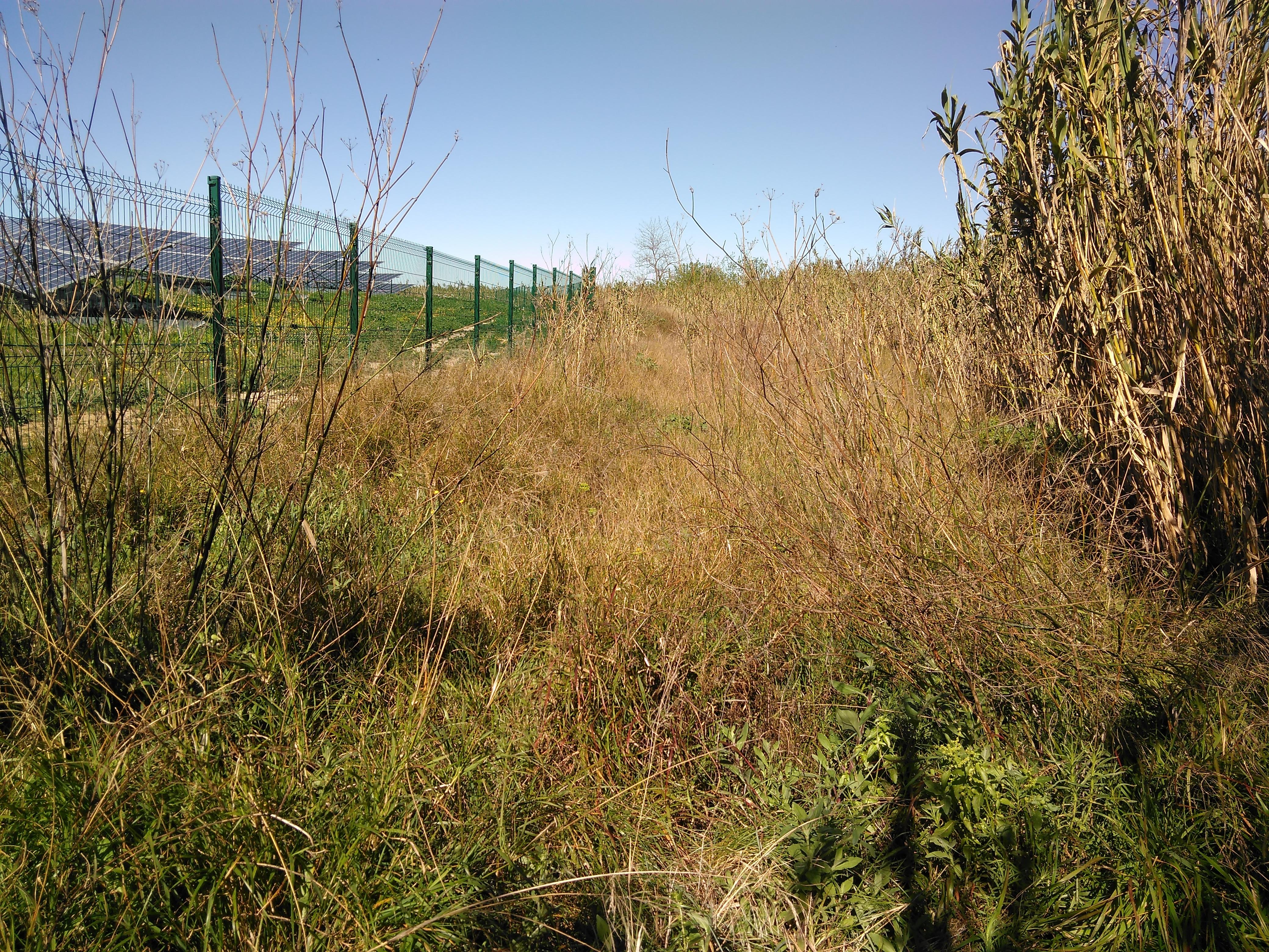 7 ha, Haute-Garonne (31410), (avant)